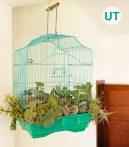 birdcage_planter_hero